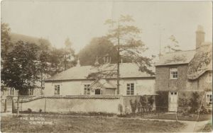 The tree is on the left  of this photo of the old village school early 1900s