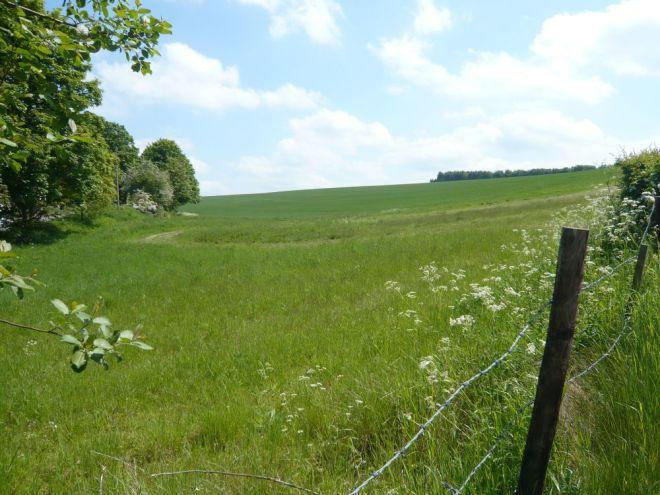 betham lane field 2 small