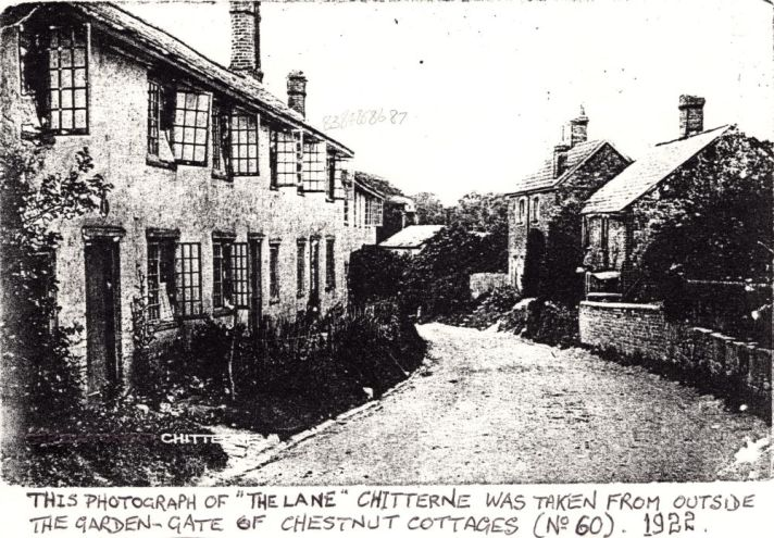 lane 3 small