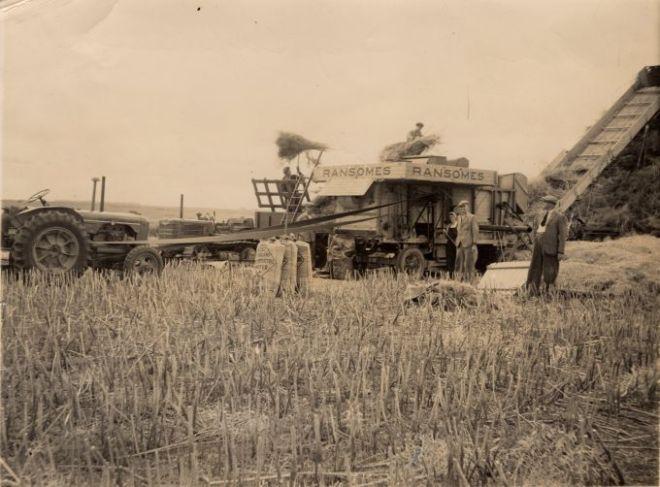 manor farm (1)