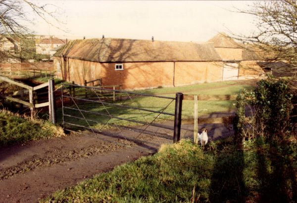 1988 stables